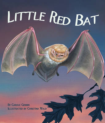 Little Red Bat by Carole Gerber