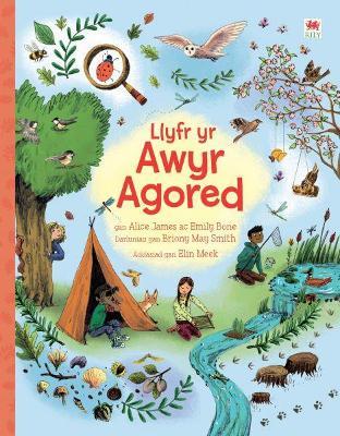 Llyfr yr Awyr Agored by Alice James