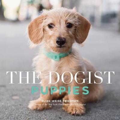 The The Dogist Puppies by Elias W Friedman