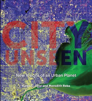 City Unseen: New Visions of an Urban Planet by Karen C. Seto