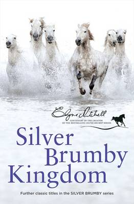 The Silver Brumby Kingdom by Elyne Mitchell