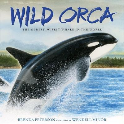 Wild Orca by Brenda Peterson