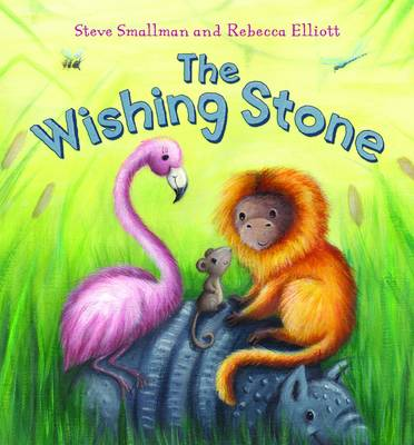 The Wishing Stone by Steve Smallman