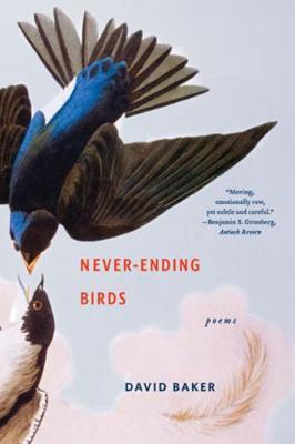 Never-Ending Birds by David Baker