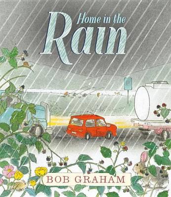 Home in the Rain by Senator Bob Graham