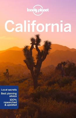 Lonely Planet California book