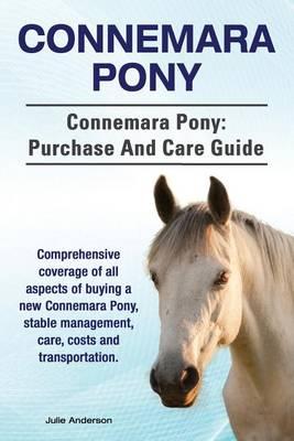 Connemara Pony. Connemara Pony by Rollins College Julie Anderson