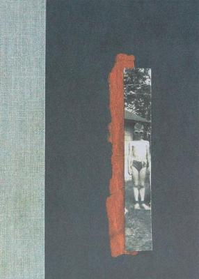 Nox by Anne Carson