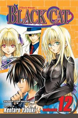 Black Cat, Vol. 12 book