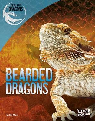 Bearded Dragons by Wil Mara