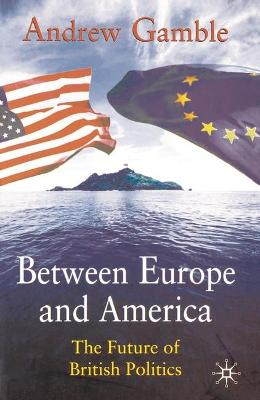 Between Europe and America by Andrew Gamble