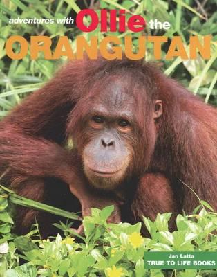 Adventures with Ollie The Orangutan book