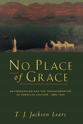 No Place of Grace by Jackson Lears