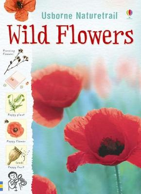 Nature Trail Wild Flowers by Sarah Khan