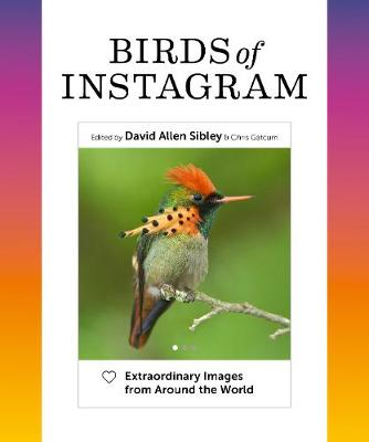 Birds of Instagram: Extraordinary Images from Around the World book
