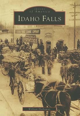 Idaho Falls book