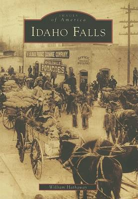 Idaho Falls by William Hathaway