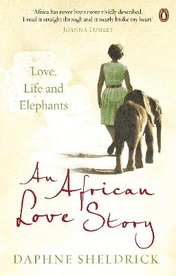 African Love Story book