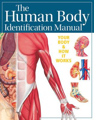 Human Body Identification Manual (Academic Edition) by Ian Whitmore