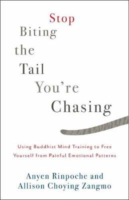 Stop Biting The Tail You're Chasing by Anyen Rinpoche