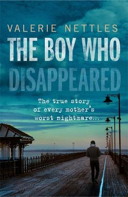 The Boy Who Disappeared by Valerie Nettles