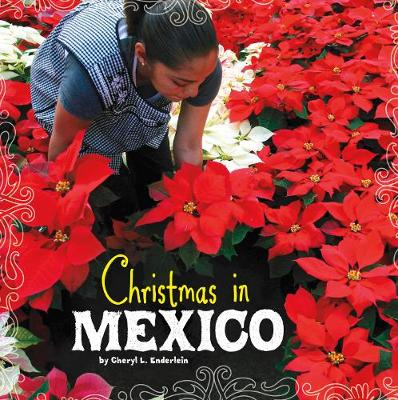 Christmas in Mexico book