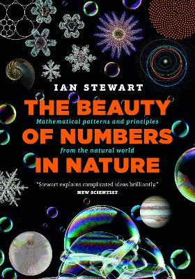 Beauty of Numbers in Nature by Ian Stewart