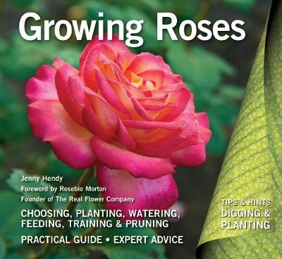 Growing Roses: Plan, Plant and Maintain by Jenny Hendy