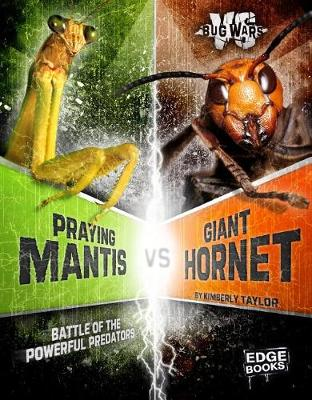 Praying Mantis vs. Giant Hornet by Alicia Z Klepeis