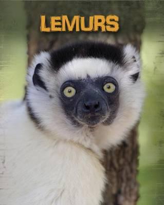 Lemurs by Claire Throp