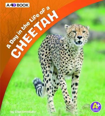 A Day in the Life of a Cheetah by Lisa J. Amstutz
