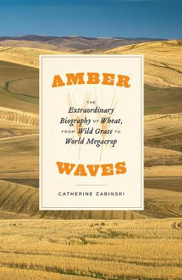 Amber Waves - The Extraordinary Biography of Wheat, from Wild Grass to World Megacrop by Catherine Zabinski