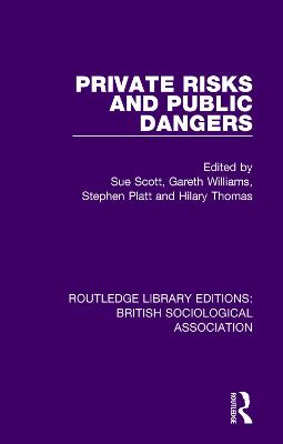 Private Risks and Public Dangers by Stephen Platt