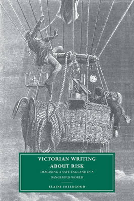 Victorian Writing about Risk book