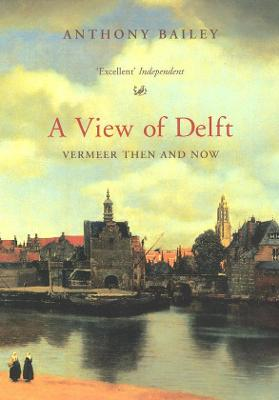A View Of Delft by Anthony Bailey