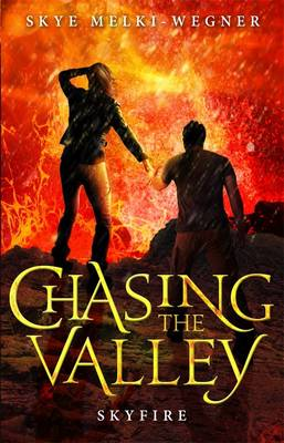 Chasing the Valley 3 book