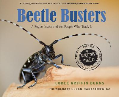 Beetle Busters: A Rogue Insect and the People Who Track It by Loree Griffin Burns