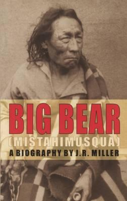 Big Bear book