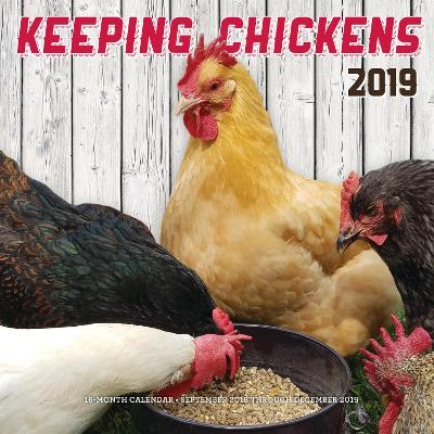 Keeping Chickens 2019: 16-Month Calendar - September 2018 through December 2019 by Editors of Rock Point