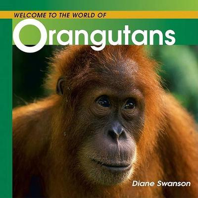 Welcome to the World of Orangutans by Diane Swanson