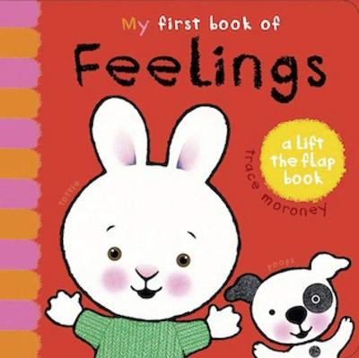 My First Book of Feelings by Trace Moroney