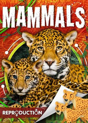Mammals by Joanna Brundle