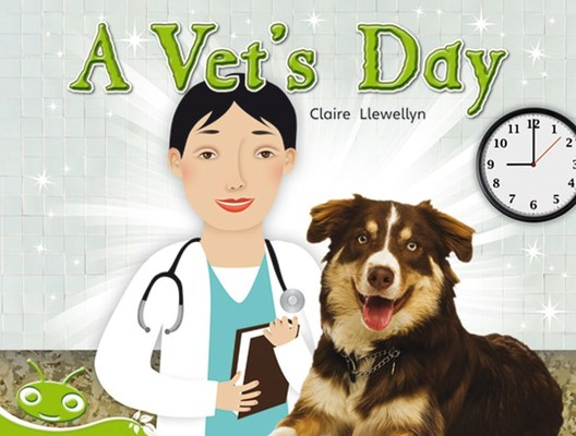Bug Club Level 13 - Green: A Vet's Day (Reading Level 13/F&P Level H) by Claire Llewellyn
