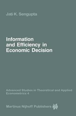 Information and Efficiency in Economic Decision by Jati Sengupta