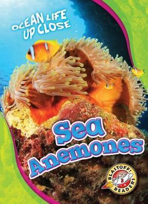 Sea Anemones by Mari C Schuh