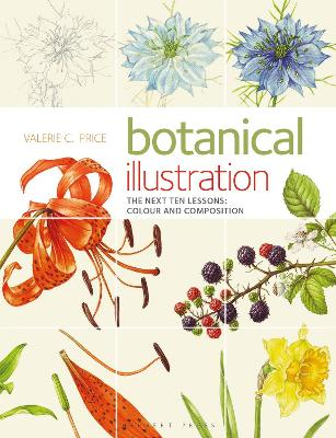 Botanical Illustration The Next Ten Lessons: Colour and Composition book