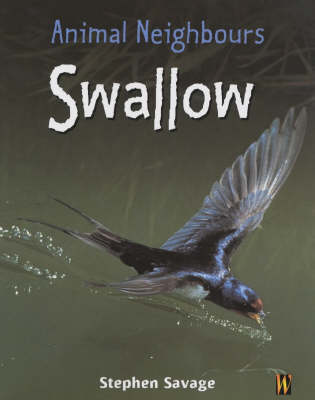 Animal Neighbours: Swallow by Stephen Savage