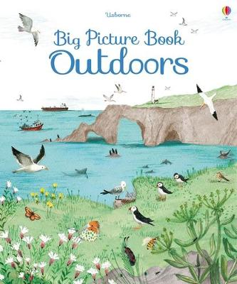 Big Picture Book of Outdoors book