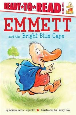 Emmett and the Bright Blue Cape book