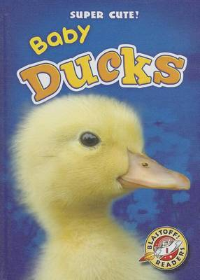 Baby Ducks by Christina Leaf